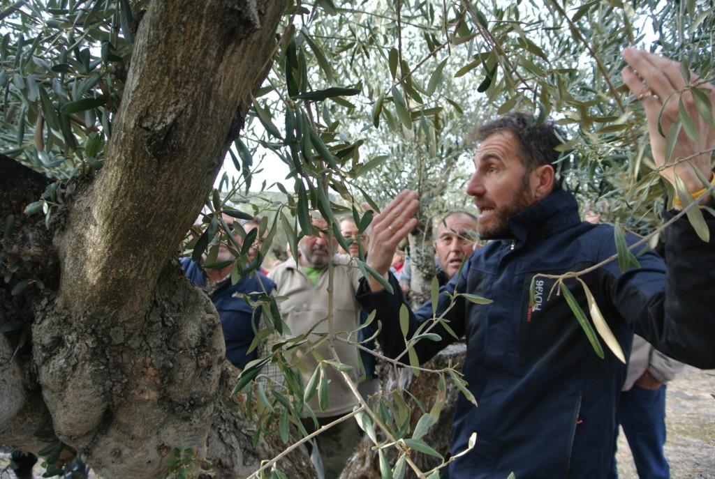 農業協同組合の組合員に、剪定の講座をする技術コンサルタントのミゲル