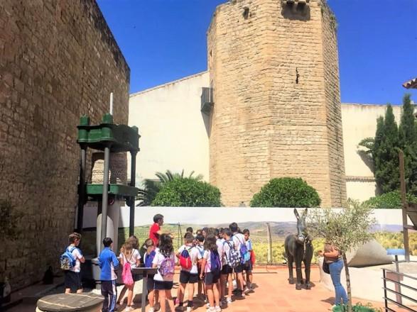 ルネサンス香る世界遺産の町、ウベダのオリーブ文化センターでオリーブオイルを学ぶ<br />【オリーブ世界一の国 スペインから】
